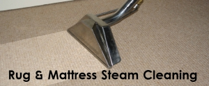 Rug & Mattress Steam Clean