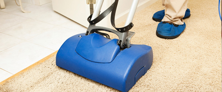 Carpet Cleaning Greenvale